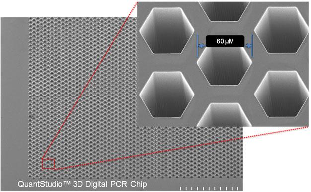 gene-plus - QuantStudio 3D Digital PCR System